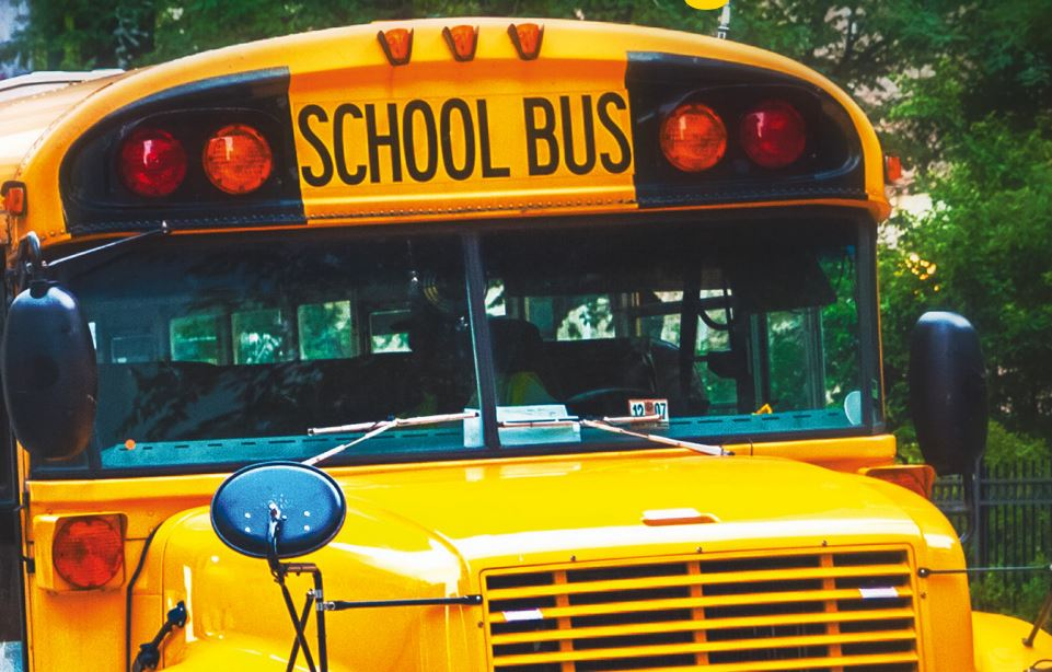 Schulbus USA
